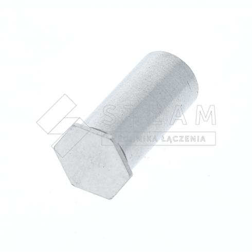 Tulejki gwintowane nieprzelotowe T-BSO4 tył